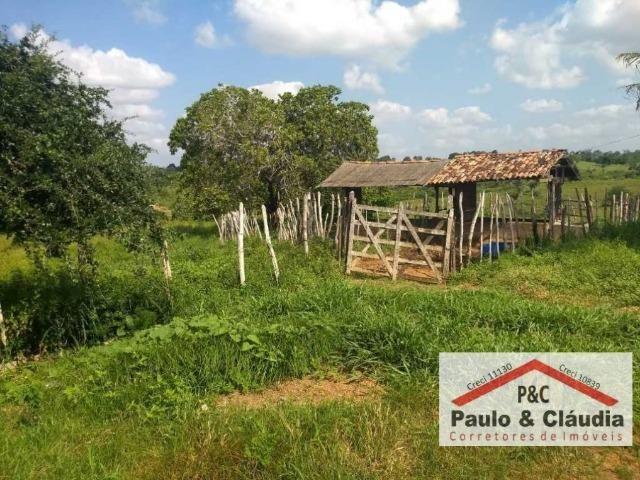 Ótima propriedade em Feira Nova, com 4 hectares - Foto 7