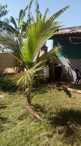 Casa itaguai 3qts vendo ou alugo - Foto 12