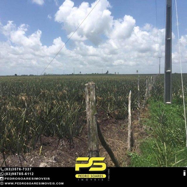 Terreno com plantação à venda, 200000 m² por R$ 1.000.000 - Santa Rita/PB - Foto 2