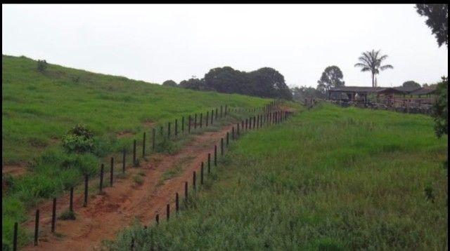 Vendo Excelente fazenda 95 hectares 36 Km de Porto Velho - Foto 18