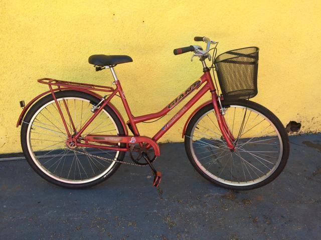 Bicicleta estilo poti