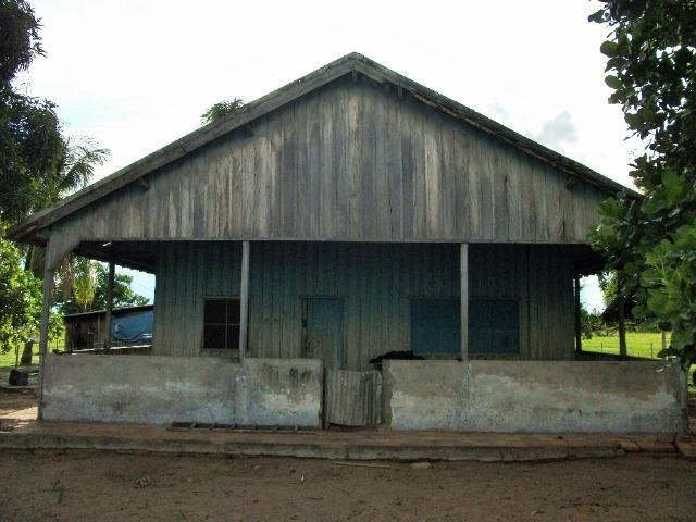 Excelente Fazenda no Pantanal do Mato Grosso do Sul - Foto 4