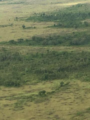 Excelente Fazenda no Pantanal do Mato Grosso do Sul - Foto 17