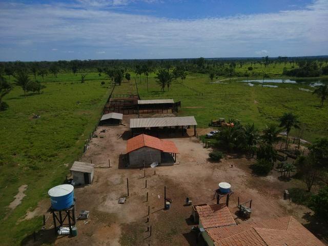 Fazenda no Pará - Foto 18
