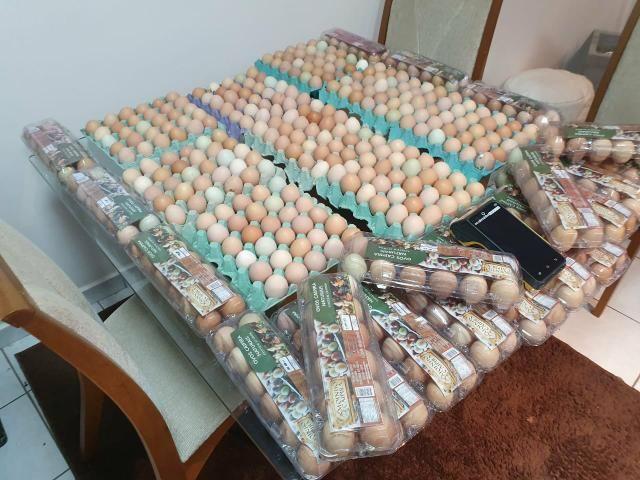 Vendo ovos caipira orgânico, - Foto 6