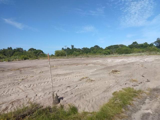 Lotes Taipu de Fora - Península de Maraú - Bahia - Foto 2