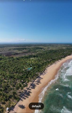 Lotes Taipu de Fora - Península de Maraú - Bahia - Foto 9