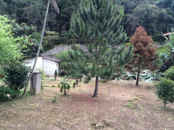 Terreno à venda, 1200 m² por R$ 100.000 - Vargem Grande - Teresópolis/RJ - Foto 2