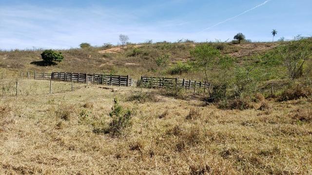 Fazenda 42 Alqueires em Campanário/MG, região de Governador Valadares/MG - Foto 3