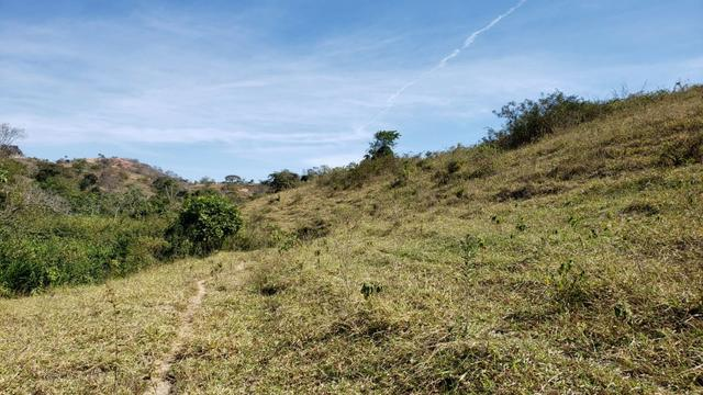 Fazenda 42 Alqueires em Campanário/MG, região de Governador Valadares/MG - Foto 16