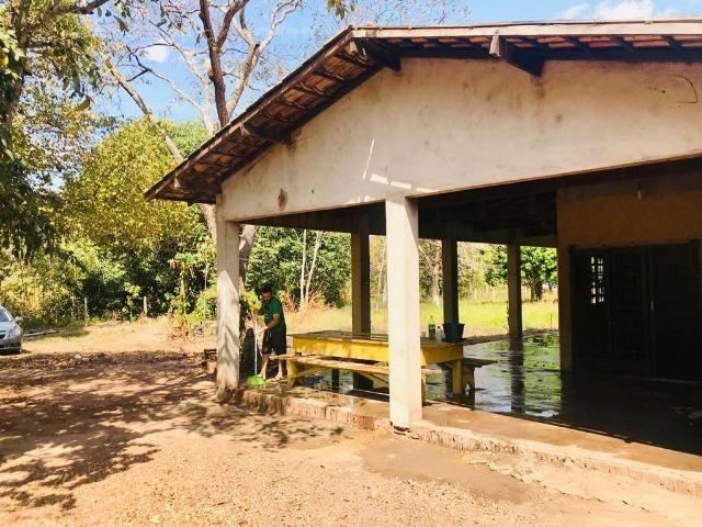 Vendo Chácara no Distrito de Santa Antonio (agende sua visita) Aceito Troca em imovel - Foto 3