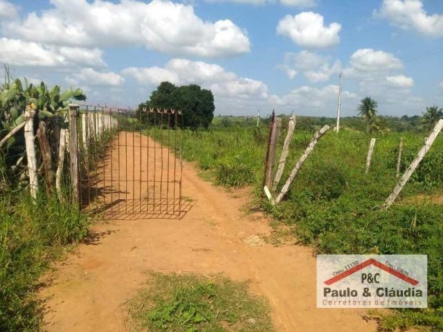 Ótima propriedade em Feira Nova, com 4 hectares - Foto 5