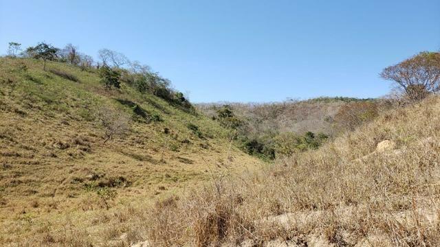 Fazenda 42 Alqueires em Campanário/MG, região de Governador Valadares/MG - Foto 12