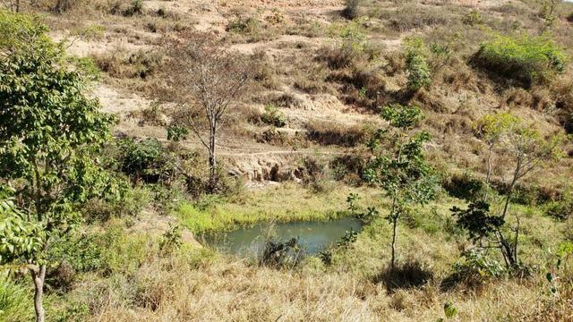 Fazenda 42 Alqueires em Campanário/MG, região de Governador Valadares/MG - Foto 10
