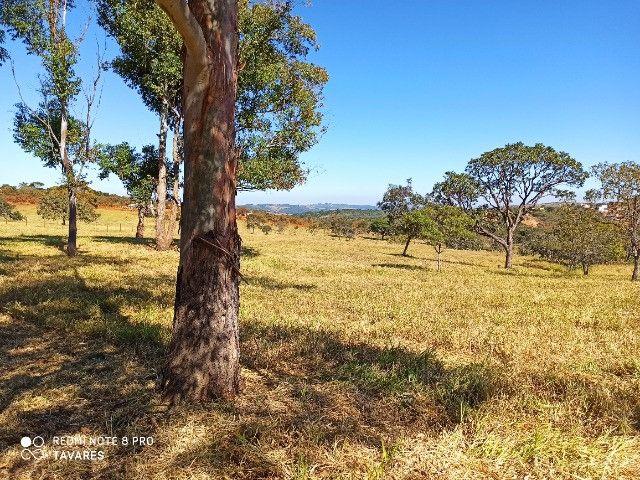 Terreno Rural de 20.000 m² pertinhho de BH - Foto 3