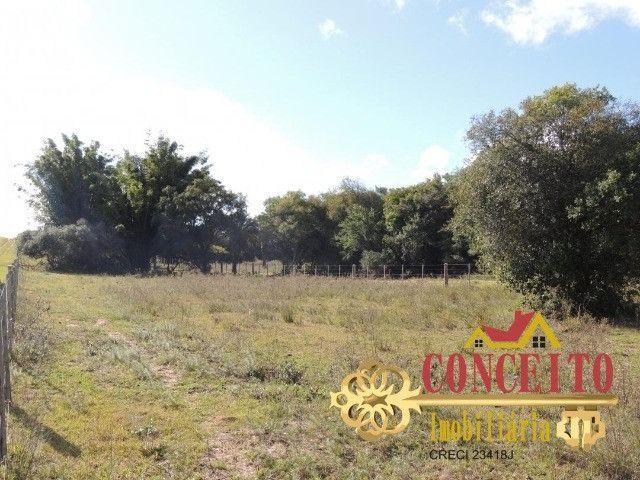 T.O.R.R.O 3,5 hectares no centro de Águas Claras por apenas R$ 300 mil - confira - Foto 5