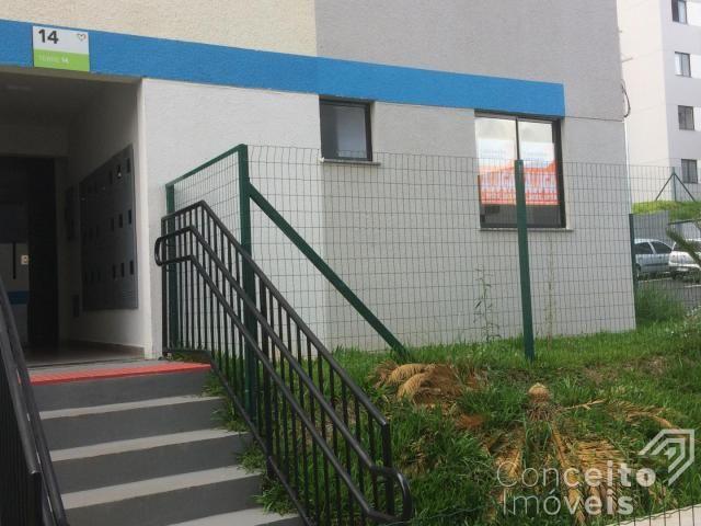 Apartamento para alugar com 1 dormitórios em Jardim carvalho, Ponta grossa cod:393113.001 - Foto 7