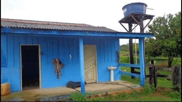 Vendo Excelente fazenda 95 hectares 36 Km de Porto Velho - Foto 3