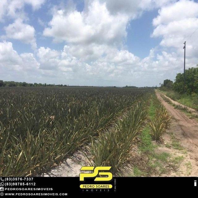 Terreno com plantação à venda, 200000 m² por R$ 1.000.000 - Santa Rita/PB