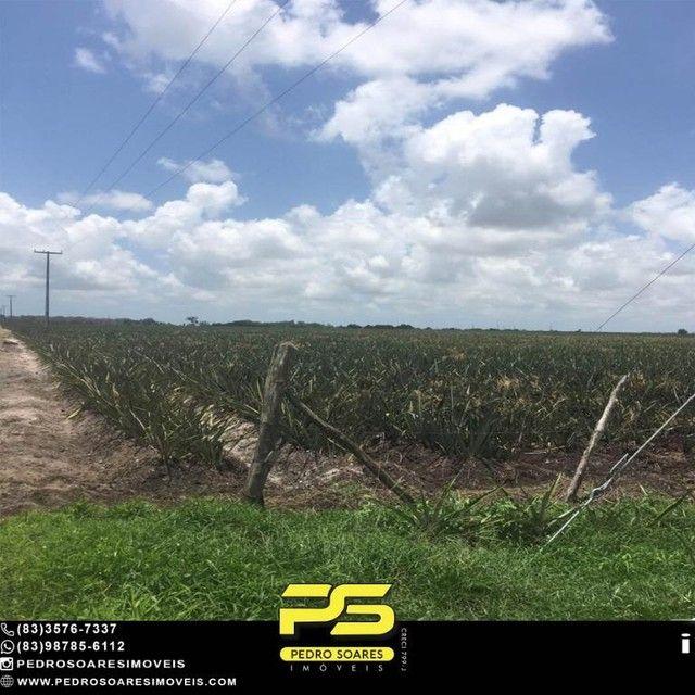 Terreno com plantação à venda, 200000 m² por R$ 1.000.000 - Santa Rita/PB - Foto 9