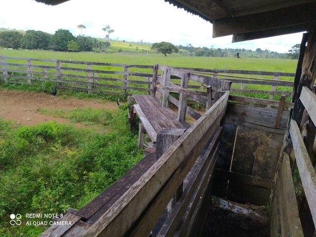 Fazenda 90 alqueires ref# 889 - Foto 7