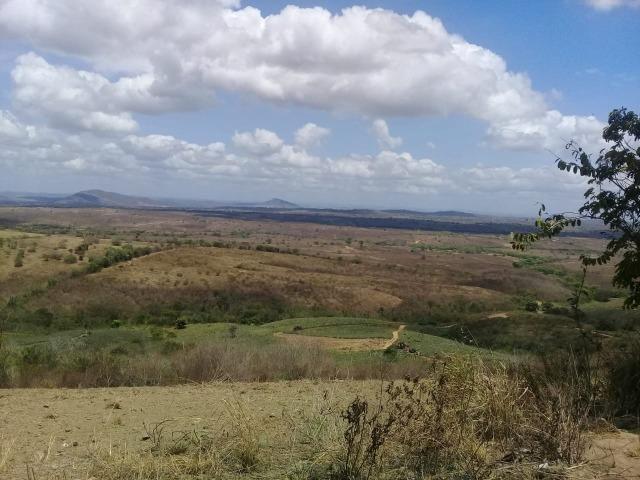 Pombos-Vend. 480 mil reais-Tem 120 Hect. Fazenda Completa,Água,Pastos, e mais - Foto 6