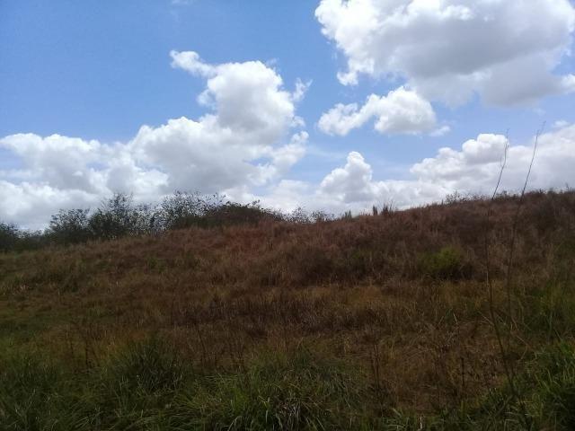 Pombos-Vend. 480 mil reais-Tem 120 Hect. Fazenda Completa,Água,Pastos, e mais - Foto 11
