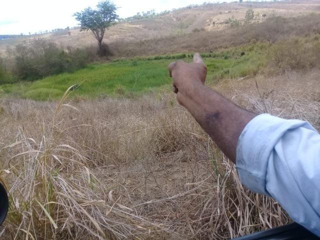 Pombos-Vend. 480 mil reais-Tem 120 Hect. Fazenda Completa,Água,Pastos, e mais - Foto 19