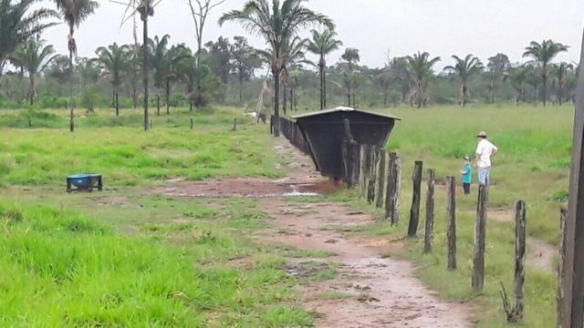 Fazenda no Pará - Foto 9