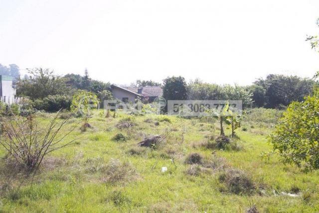 Terreno à venda em Morro santana, Porto alegre cod:113388 - Foto 2