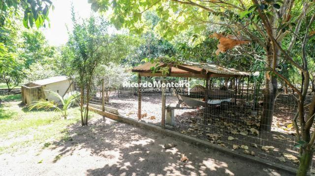Chácara na beira do lago, pronta para morar a 22km do centro de Palmas - Foto 14