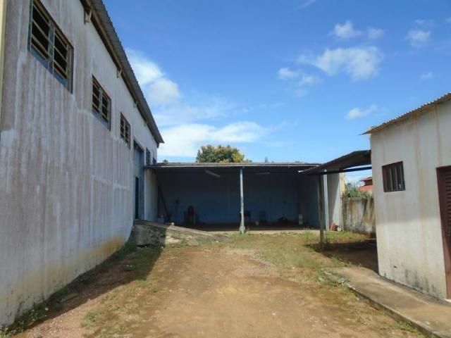 Galpão para alugar, 450 m² por r$ 3.700/mês - jardim pampulha - aparecida de goiânia/go - Foto 5