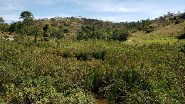 Fazenda 42 Alqueires em Campanário/MG, região de Governador Valadares/MG - Foto 8