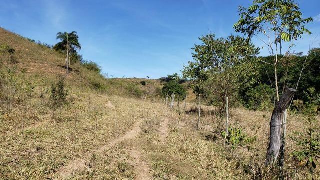 Fazenda 42 Alqueires em Campanário/MG, região de Governador Valadares/MG - Foto 9