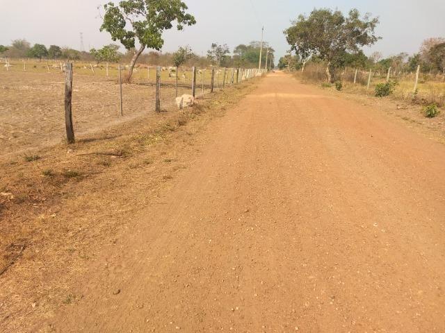 Chácara 2.5 ha, linha 16 cinturão verde - Foto 8