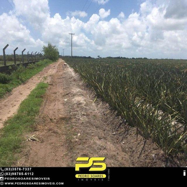 Terreno com plantação à venda, 200000 m² por R$ 1.000.000 - Santa Rita/PB - Foto 5