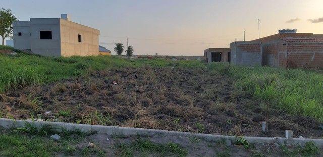 Terrenos no Loteamento Nova Pindorama Tracunhaém PE - Foto 2