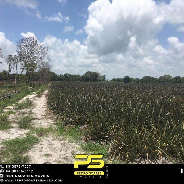 Terreno com plantação à venda, 200000 m² por R$ 1.000.000 - Santa Rita/PB - Foto 10