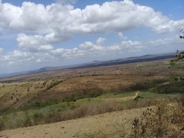 Pombos-Vend. 480 mil reais-Tem 120 Hect. Fazenda Completa,Água,Pastos, e mais - Foto 4
