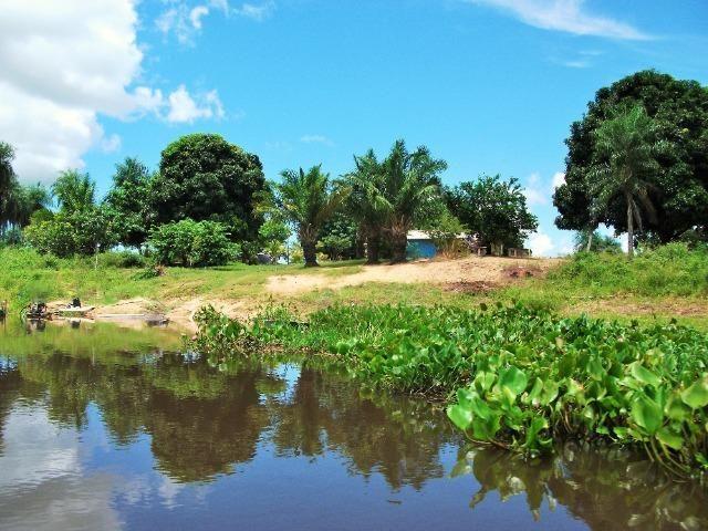Excelente Fazenda no Pantanal do Mato Grosso do Sul - Foto 10