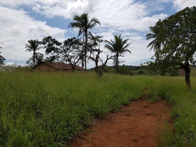 João Alfredo = Vend. 350 - Sítio com 17 Hect. Pronto pra Plantar e Criar - Foto 5
