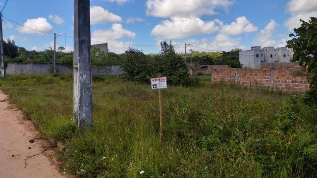 Oportunidade: Lote residencial em Nova Dias d'Ávila, escriturado e em esquina total - Foto 5