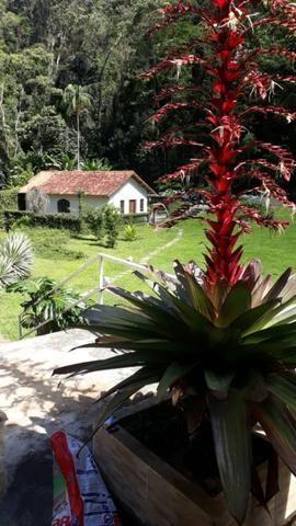Vendo Linda Chácara Em Teresópolis - Foto 3