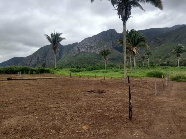Terreno em itaitu/jacobina-OPORTUNIDADE! - Foto 6
