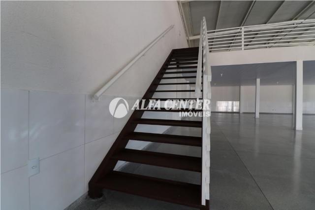 Galpão para alugar, 308 m² por r$ 4.300,00/mês - setor andréia - goiânia/go - Foto 9