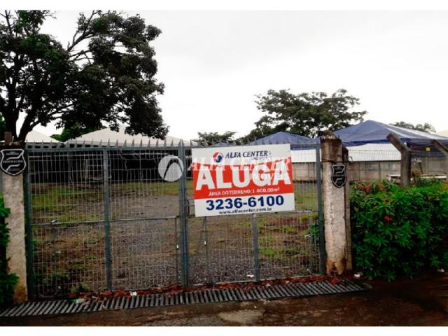 Área para alugar, 1000 m² por r$ 2.000/mês - setor castelo branco - goiânia/go