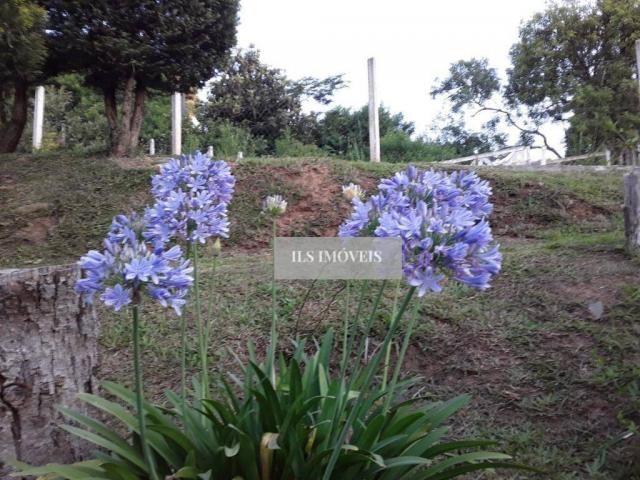 Chácara em mandirituba - Foto 3