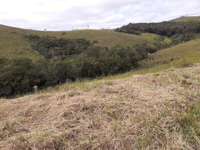 Sítio no município de Carvalhos/MG  - Foto 13
