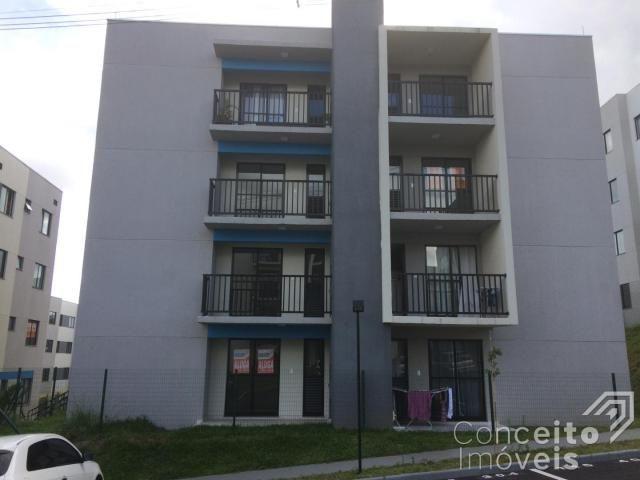 Apartamento para alugar com 1 dormitórios em Jardim carvalho, Ponta grossa cod:393113.001 - Foto 4