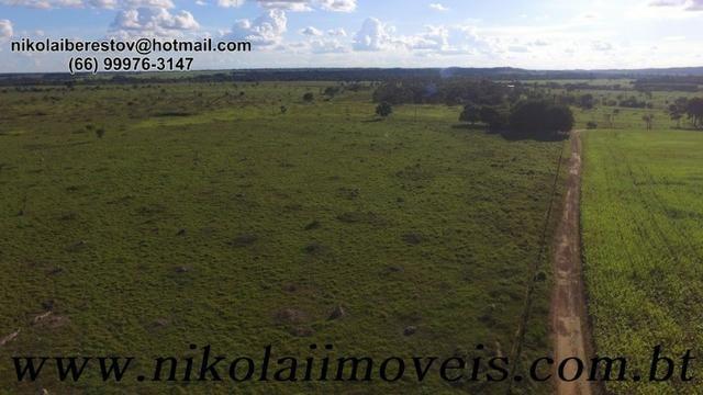 Fazenda 58 hectares 3 km de cidade nordeste mt nikolaiimoveis